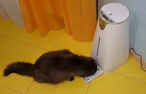 SITITEK Pets Pro